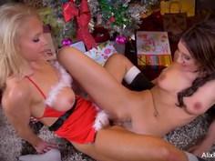 Hot lesbians tribbing on Xmas day